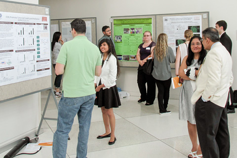 Students and researchers discussing posters.