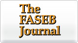 FASEB JOURNAL graphic