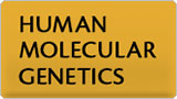 HUMAN MOLECULAR GENETICS graphic
