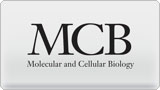 MOLECULAR AND CELLULAR BIOLOGY graphic