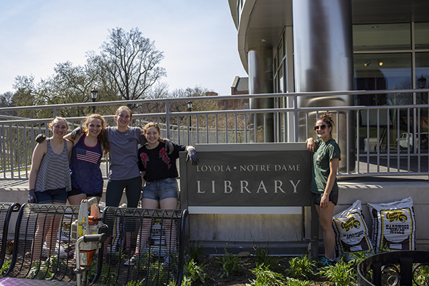 Walker (far right) with peers from BEElieve on the day they planted 200 flowers near Loyola's library.
