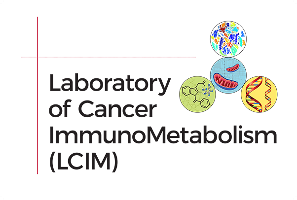 The Laboratory of Cancer Immunometabolism's graphical identity was designed to project a spirit of unity and capture several of the program's themes, such as chemistry, genetics, and metabolism. (Image contributed by Dan McVicar)