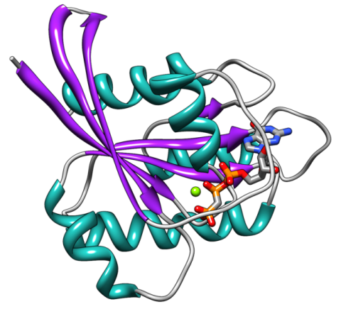 Ribbon structure