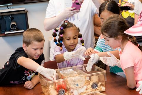 Children playing with mice at Take Your Child to Work Day.