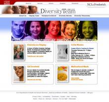 Screen capture of website.