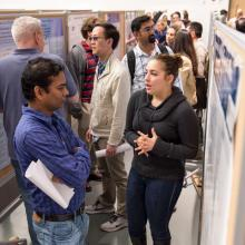 Spring Research Festival posters.